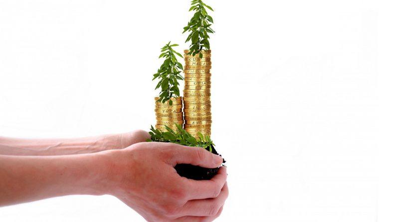 ręce trzymające monety, na monetach są drzewa - symbolizuje to kredyt